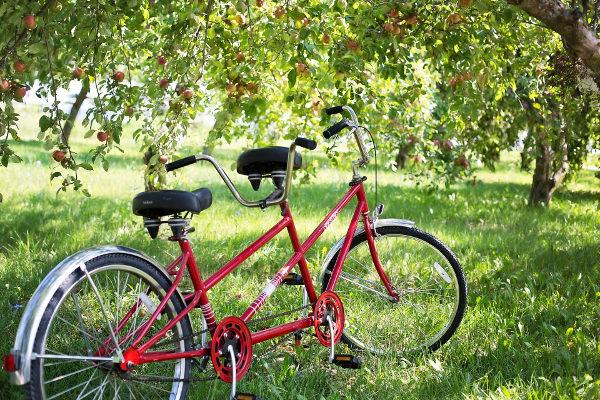 Vélo tandem dans la nature