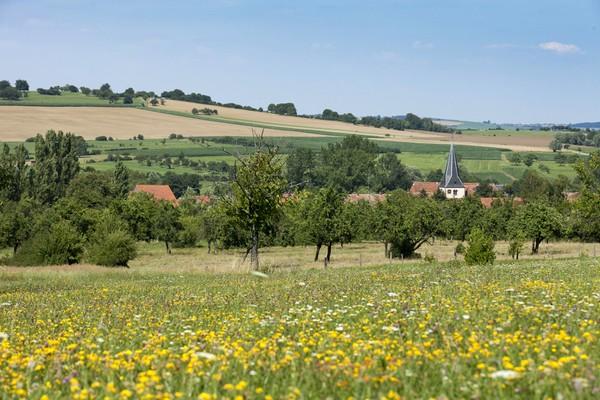Photo de paysage de plaines des Vosges du Nord