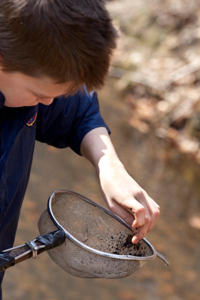 Photo d'un enfant à la recherche des petits habitants de la rivière, à l'aide de son étamine.
