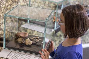 Enfant observant différents cailloux présenté dans l'exposition.