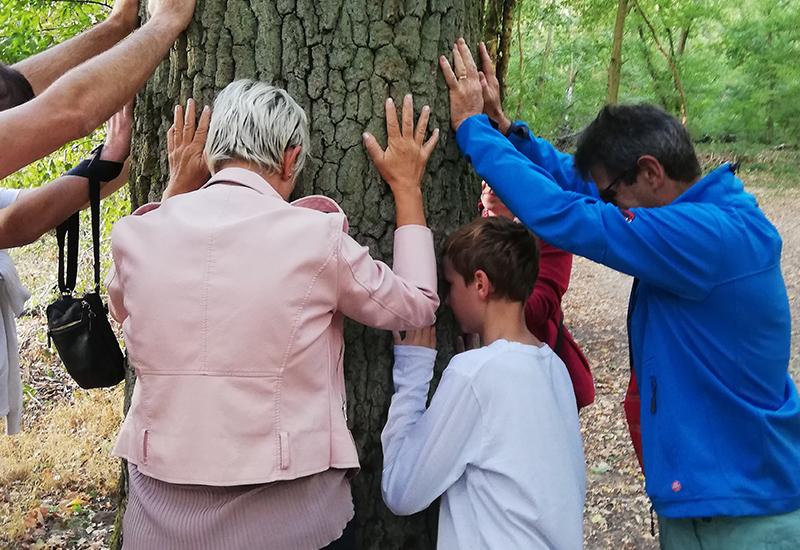 Un bain de forêt – Sylvothérapie. Personnes touchant un tronc d'arbre
