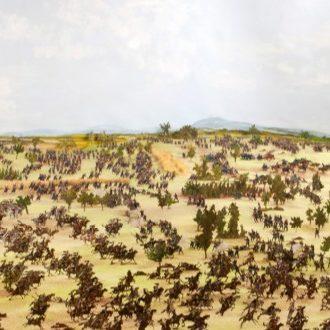 Visite contée : Musée de la Bataille du 6 août 1870