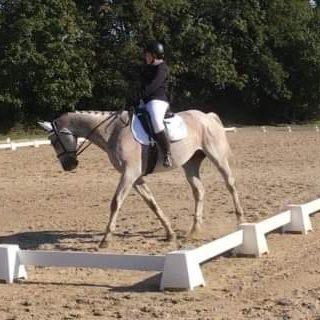 Séance d'équitation